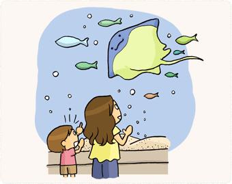 海遊館でサメとエイに興味津々